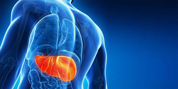 Điều trị viêm gan B không quá khó nếu bạn tuân thủ đúng những yếu tố sau đây