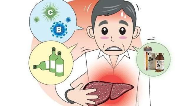 Nguyên nhân gây men gan tăng bất thường