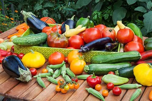 Người bị gan nhiễm mỡ nên ăn nhiều rau xanh, ngũ cốc và trái cây tươi
