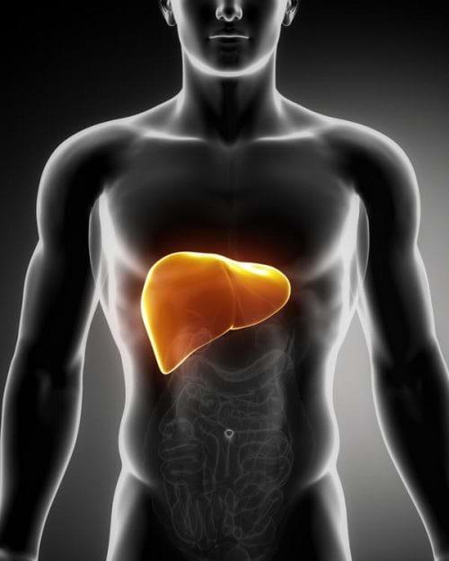 Gan nhiễm mỡ độ 1 là bệnh gan nhiễm mỡ cơ bản
