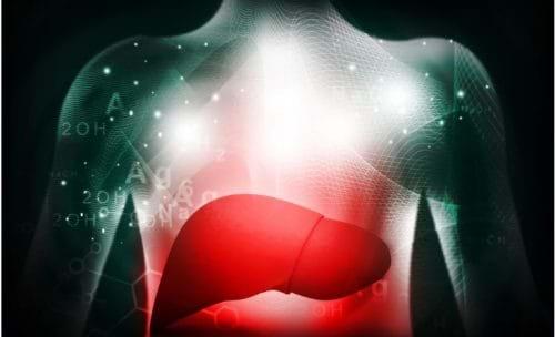 Viêm gan tự miễn có thể là nguyên nhân men gan cao trong máu