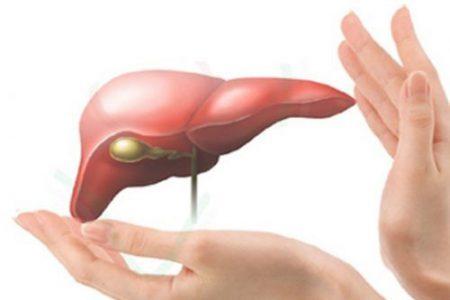 Bảo vệ tế bào gan trước tác hại của rượu bia và thực phẩm bẩn