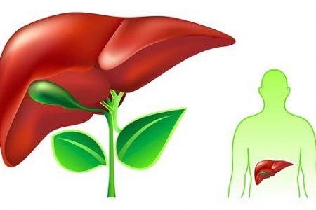 Nguyên nhân và phương pháp bảo vệ tế bào gan tốt nhất