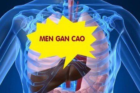Men gan cao – Con đường ngắn nhất dẫn đến xơ gan, ung thư gan.