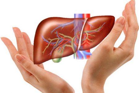 6 bài thuốc hạ men gan cao tại nhà bạn không nên bỏ qua!